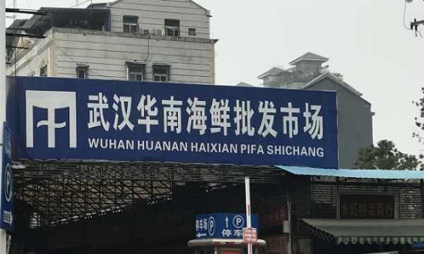 突发!华南海鲜市场翻盘:未必是病毒发源地