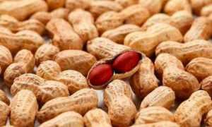 新研究表明:食用植物蛋白可以长寿